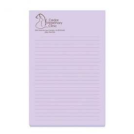 Promotional Bic 4X6 Adhesive Sticky Notes 25 Sheets