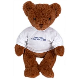 Promotional 13 H Nutmeg Bear