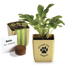 Customized Flower Pot Set With Basil Seeds