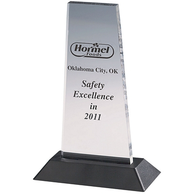 Custom Excellence Acrylic Award
