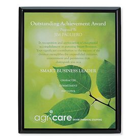 Promotional Jaffa 8x10 Black Plaque Award