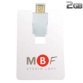 Promotional 2 GB Flip Card USB 2.0 Flash Drive