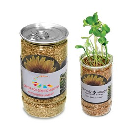 Promotional Sunflower-In-A-Can
